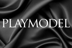 Playmodel-logo
